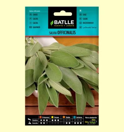 Semillas de Salvia Officinalis - Batlle - 1,5 gramos