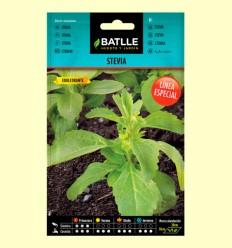 Semillas de Stevia - Batlle - 35 semillas