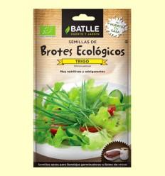 Semillas de Trigo Brotes Eco - Batlle - 33 gramos