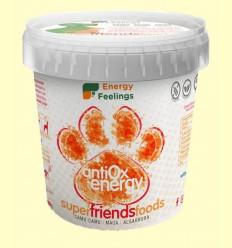 Superfood Friends Energy Antiox - Energy Feelings - 500 gramos