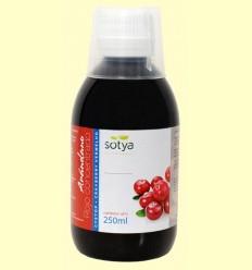 Arándano Rojo Concentrado - Sotya - 250 ml