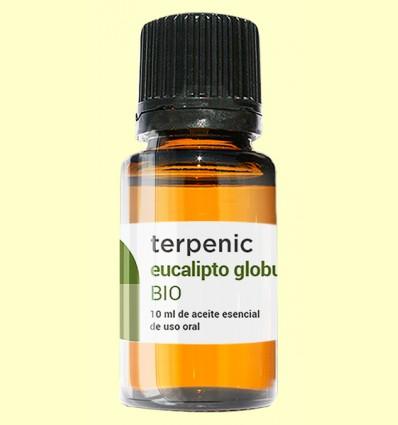 Eucalipto Globulus - Aceite Esencial Bio - Terpenic Labs - 10 ml