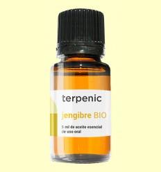 Jengibre - Aceite Esencial Bio - Terpenic Labs - 5 ml