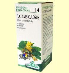 Fucus Vesiculosus Solución Hidroalcohólica - Specchiasol - 50 ml