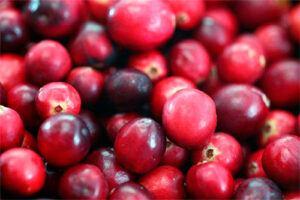Arándanos Rojos: Propiedades y cómo tomarlo