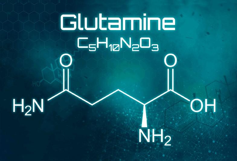 l-glutamina propiedades
