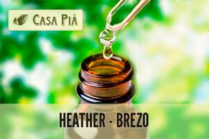 Heather o Brezo: Flores de Bach