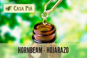 Elixir Floral Hornbeam - Hojarazo