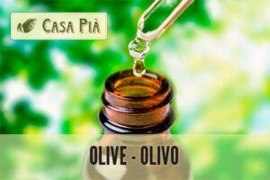 Olive o Olivo: Flores de Bach