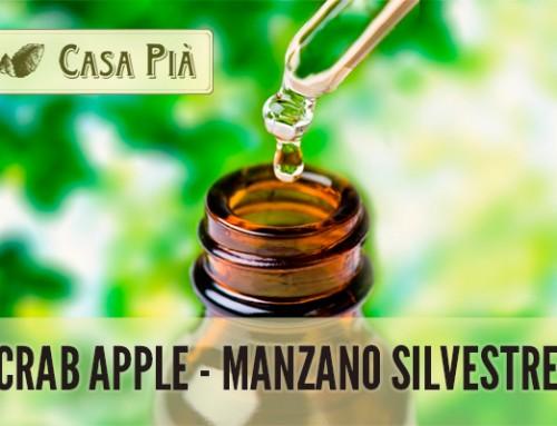 Crab Apple – Manzano Silvestre