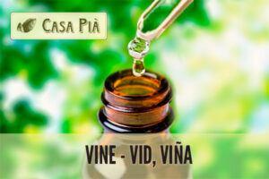 elixires florales vine vid