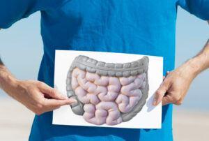 El intestino: salud interior
