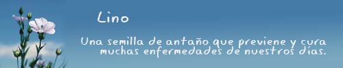 lino_informacion_cabecera.jpg