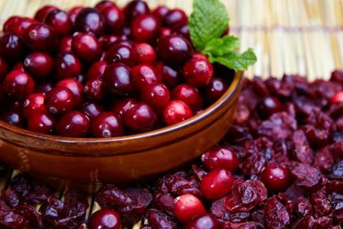 beneficios del arándano rojo