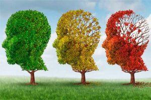 Las vitaminas B podrían ayudar a prevenir el Alzheimer