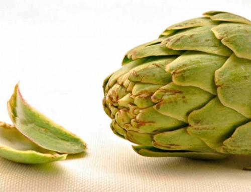 Extracto de hoja de alcachofa para reducir el colesterol – Información