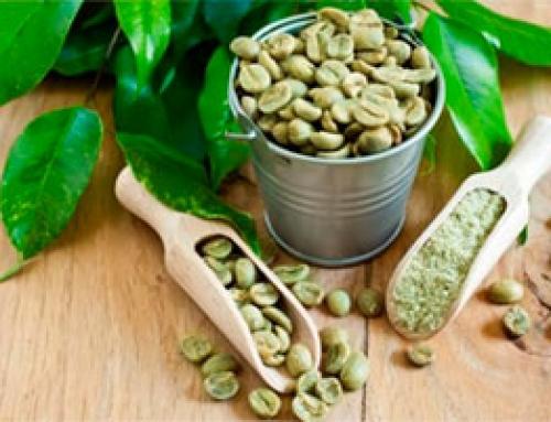 El Café Verde – Artículo informativo