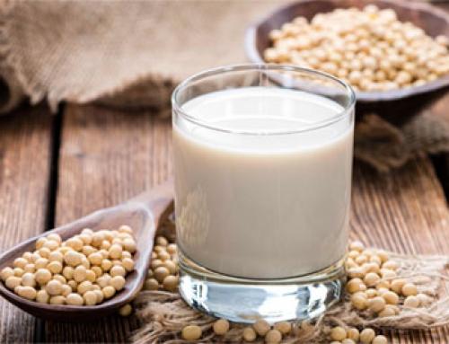 Las leches vegetales más originales – Artículo informativo