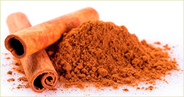 canela antioxidante