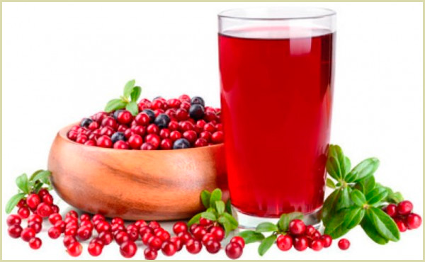 arandanos antioxidantes