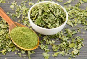 Moringa: propiedades de la planta medicinal