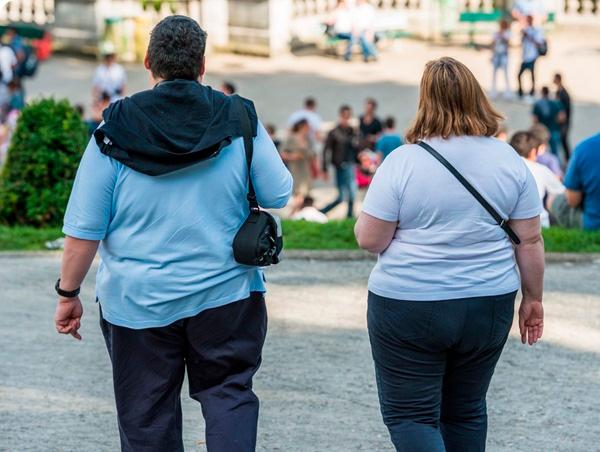 Plantas medicinales, obesidad e inflamación