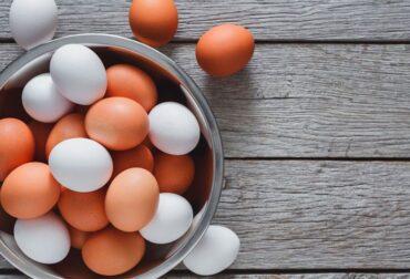 membrana de cascara de huevo