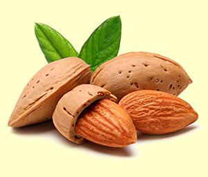 Magnesio, fuentes dietéticas